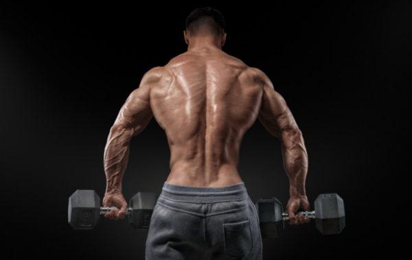 Любимите ми упражнения за гръб