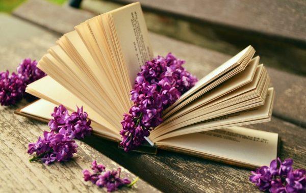 8 чудесни книги, които са по-интересни от всичко по телевизията