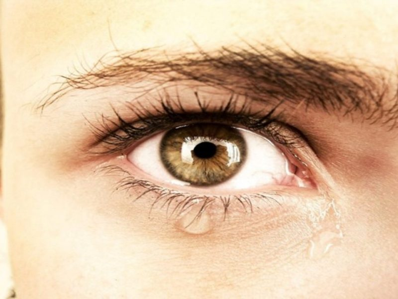 Нещастието – болестта на XXI век