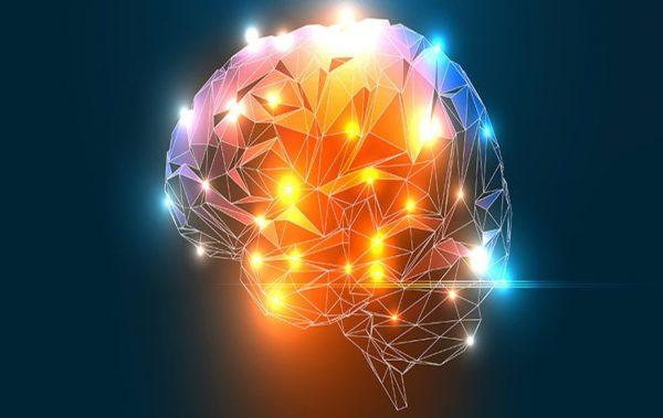 Да излъжеш мозъка (ВИДЕО)