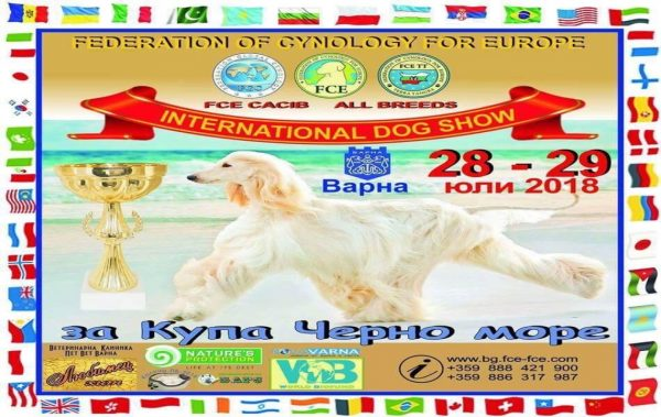 Кучета дефилират на изложба в Морската градина във Варна