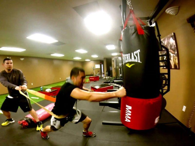 Теория на силовата тренировка