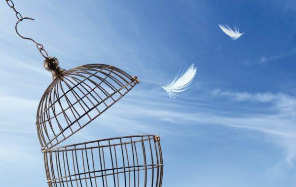 Прошката е атрибут на силните