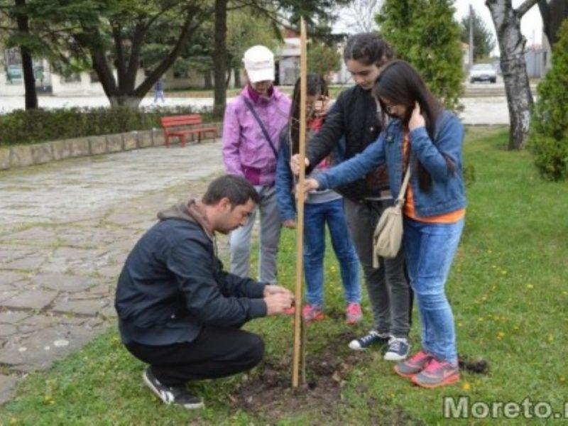 """Младежи ще садят дървета в кв. """"Аспарухово"""""""