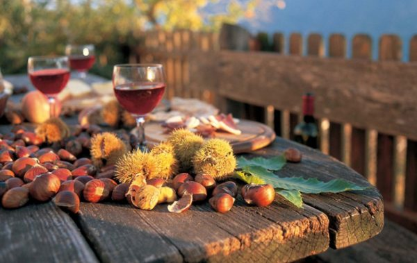 Дар за здравето от есента