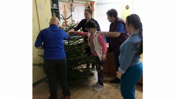 Горското подари коледни дръвчета на център за деца с увреждания