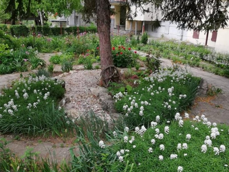 Община Варна ще финансира с до 5 000 лв. изграждането на градинки пред блоковете