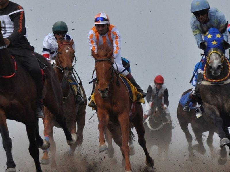 Турнир по конен спорт организират във Варна