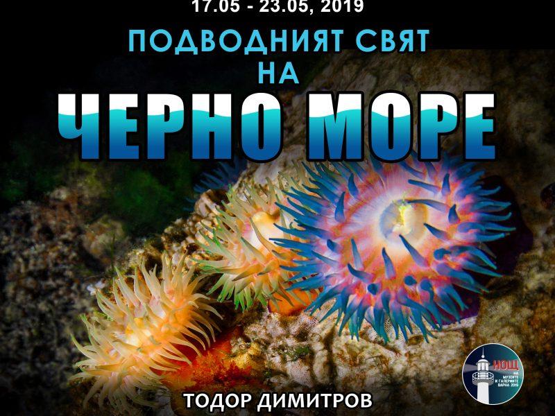 """Изложба """"Подводният свят на Черно море"""""""