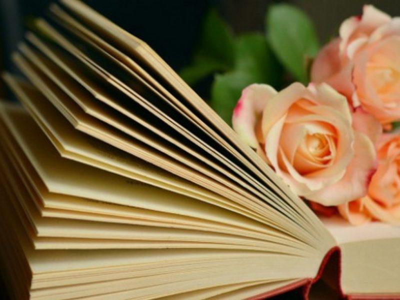 Премести си погледа… и се гмурни в света на книгите. За да светиш със собствена светлина!