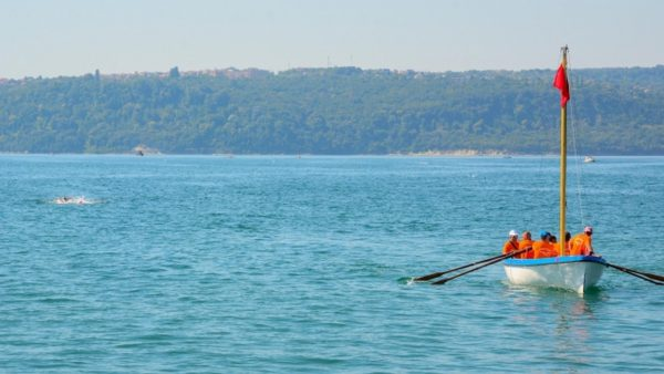 Над 40 плувци се записаха за Галата – Варна два месеца преди старта