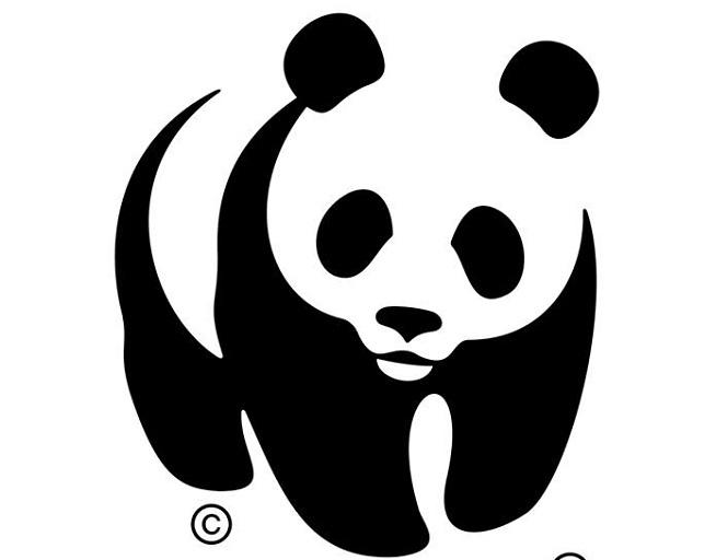 WWF гостува във Варна