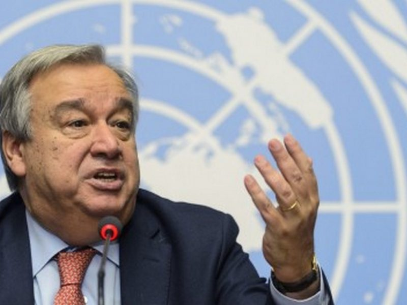ООН: Трябва да спрем войната си срещу природата