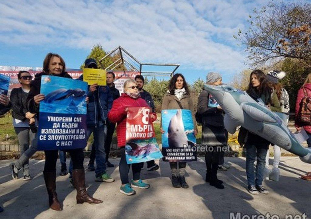 Граждани протестираха с искане Делфинариумът във Варна да бъде закрит (снимки)
