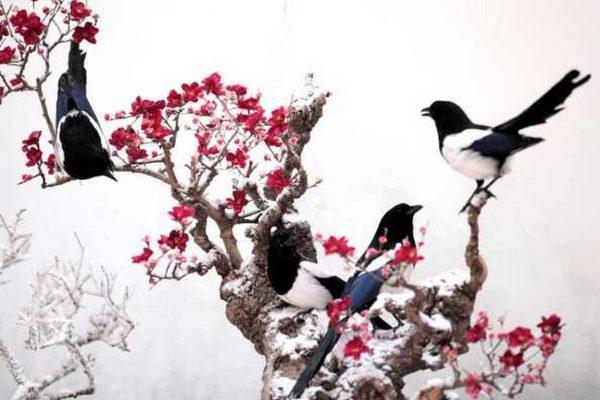 5 урока за успеха, които можем да научим от живата природа