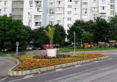 """Надпреварата за най-красивата градинка в кв """"Вл.Варненчик"""" във Варна започна"""