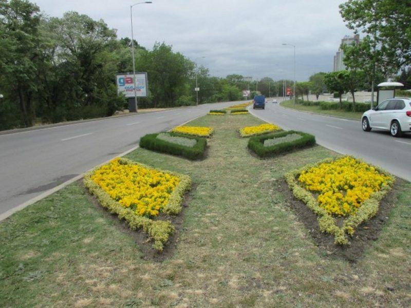 Нови цветни фигури изникват по варненските булеварди