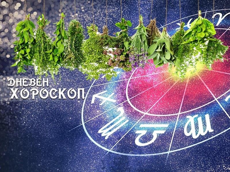 Дневен билков хороскоп за 1 август
