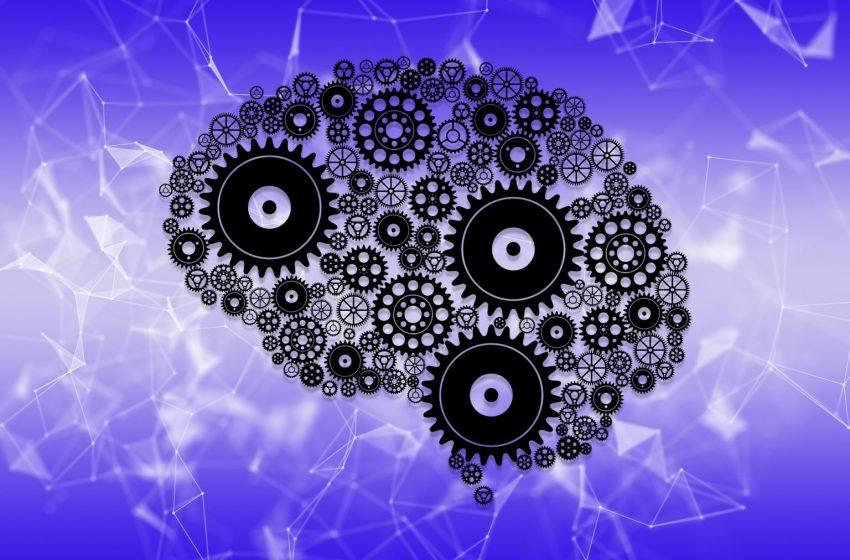 Подобри ефективността си, като разбереш как работи мозъкът ти