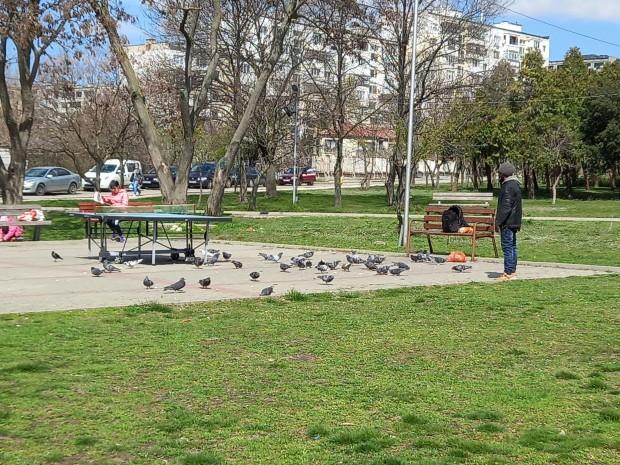 """Паркът на """"Владиславово"""" напомня за площад Сан Марко във Венеция"""