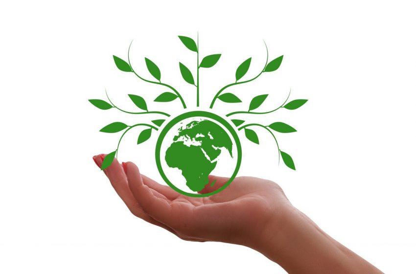Възможности за природосъобразен живот обсъждат на форум във Варна